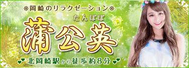 蒲公英 たんぽぽ| 岡崎のリラクゼーションマッサージ